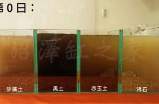 矽藻土、黑土、赤玉土和沸石對於水質影響的觀察比較